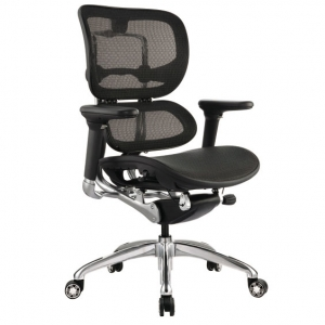 Ergo1 Executive Black Mesh Back & Seat with Arms Office Chair