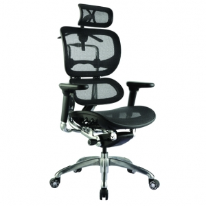 Ergo1 Executive Black Mesh Back & Seat with Arms & Headrest Office Chair