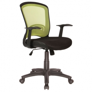 Intro Green Mesh Back Task Chair with Arms