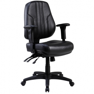 Rover Managers Low Back Ergonomic Office Chair with Arms in Black Leather